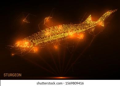 Light rays sturgeon. Hologram sturgeon. Golden glitter beluga. Sturgeon of gold dust and particles. Low poly vector illustration of beluga.