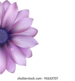Lilac Flower, Isolated On White Background, Vector Illustration