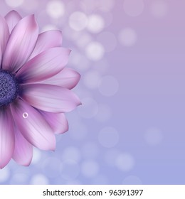 Lilac Gerber With Water Drop, Vector Illustration