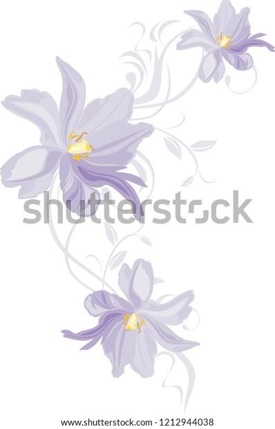 lilac-tulips-decorative-element-design-6