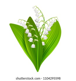 Lilly of the valley isolated on white photo-realistic vector illustration