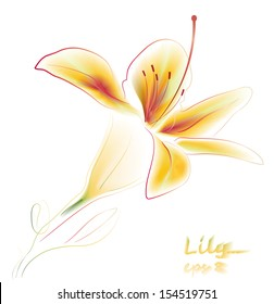 Lily flower isolated on the white background. Water color. Vector. eps 8