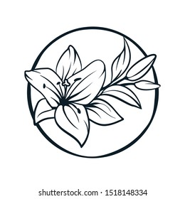 Lily flowers. Blooming lily. Card or floral background with blooming lilies. Silhouette of a lily flowers on a white background. Vector illustration. - Vector graphic.