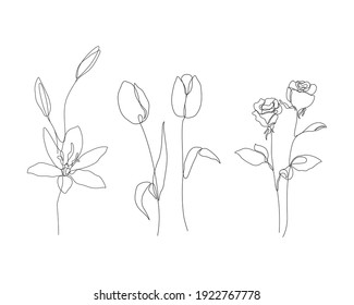 lily, tulip, and rose flowers illustration in one line art style. continuous drawing in vector best used for icon, wall art prints, posters, magazine, postcard, etc.