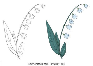 Lily of the valley. Black and white vector illustration for coloring book and colorful illustration.