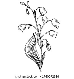 Lily of the valley tattoo sketch