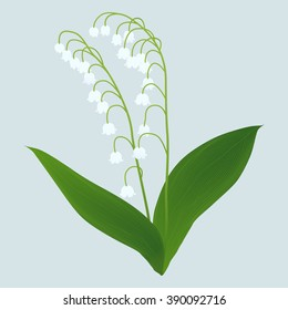 lily of the valley double isolated on a light background