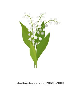 Lily of the valley with green leaves. Spring bouquet. Nature theme. Detailed flat vector design