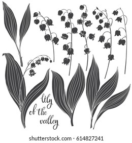 Lily of the valley. Vector illustration, isolated floral elements for design. Silhouette monochrome illustration on white background.
