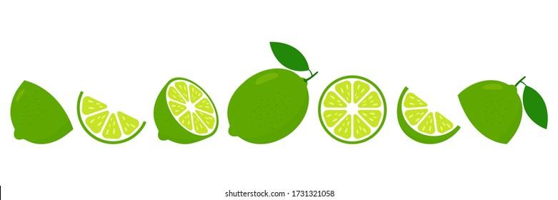 Lime fresh slices set. Cut limes fruit slice for lemonade juice or vitamin c logo. Citrus icons vector illustration isolated on white background.