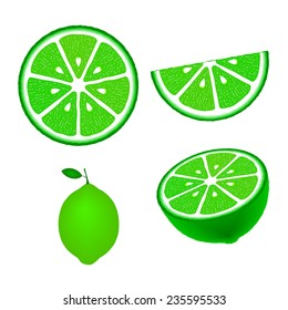 Lime fruit set, isolated on white background, vector illustration.