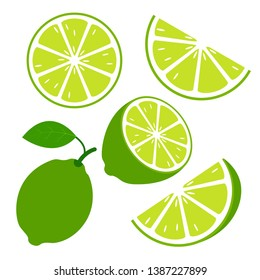 Lime fruits with slices and leaves on white background. Vector graphic design elements. - Vector