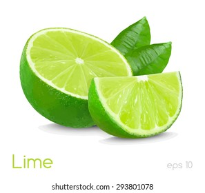lime slice illustration isolated on white background