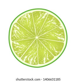 Lime slice isolated on white background. Citrus in cross section. Vector illustration