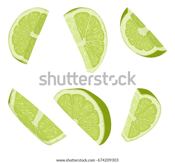Lime slices. Realistic vector illustration of cut citrus piece. Juicy slices of fresh fruits isolated on white background. Ingredient for cocktails and food garnish