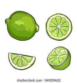 Limes, sketch style vector illustration isolated on white background. Set of realistic hand drawings of whole, half ripe and slice limes, segment