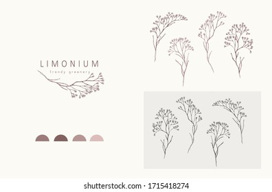 Limonium, babys breath logo and branch. Hand drawn wedding herb, plant and monogram with elegant leaves for invitation save the date card design. Botanical rustic trendy greenery vector illustration