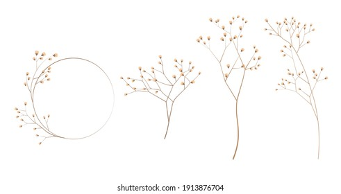 Limonium, wedding grass set stock vector illustration. Delicate elegant floral for an invitation. Cream color. Dry flowers in pastel colors isolated on a white background for invitation design.
