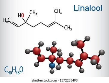 Linalool  molecule. Structural chemical formula and molecule model. Vector illustration