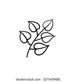 Linden leaves hand drawn vector outline doodle icon. Vector sketch illustration of linden branch with leaves for print, web, mobile and infographics isolated on white background.
