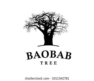 Line Art Baobab Tree Illustration Vintage Logo Vector