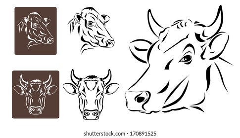 Line art of cow's head on white background