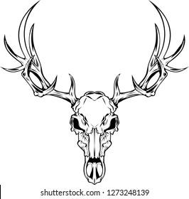 line art from a deer skull