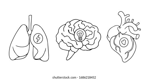 Line art style drawing, stickers design of lungs, hearts and brains icons black and white line art drawing