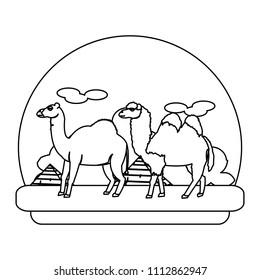 line camel and dromedary desert animal travel