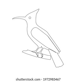 Line drawing Woodpecker tattoo. Vector Illustration. Free single line drawing of parrot. Outline drawing of Woodpecker birds silhouette one line hand drawing continous art. Woodpecker line drawn