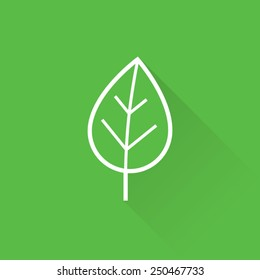Line Green Leaf Icon