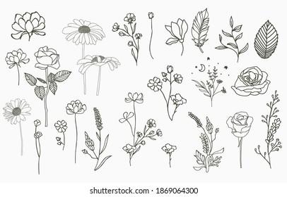 Line-Objektkollektion mit Hand, Magnolien, Rose, Lavendel, Jasmin, Blatt, Blume, Sonnenblumen