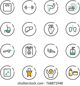 line vector icon set - floor scales vector, barbell, power hand, mri, stomach, liver, heart, lungs, push ups, pull, abdominal muscles, liquid soap, x ray, success, uv cream