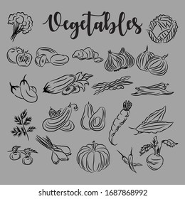 line vector vegetable icon, with a blend of abstract lines, but still functional.