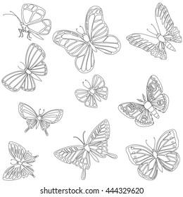 Linear butterflies, vector sketch