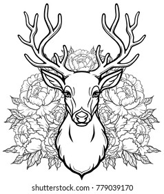 Linear drawing of the head of a young horned deer, openwork  flowers. Vector illustration isolated on a white background. Print, potser, t-shirt, card.