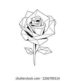 Linear illustration of a rose flower