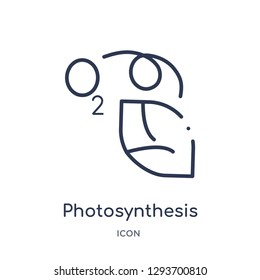 Linear photosynthesis icon from Education outline collection. Thin line photosynthesis icon vector isolated on white background. photosynthesis trendy illustration