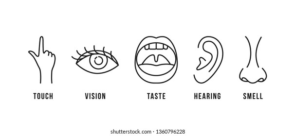 linear scheme of five human senses. flat stroke style trend modern lineart logotype graphic art design isolated on white background. concept of 5 perception organ in neuroscience or psychology