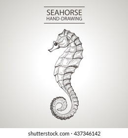 linear silhouette stylized sea horse isolated on light background. Sketch handmade -  Stock Vector
