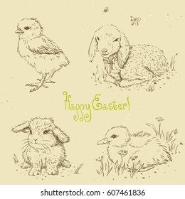 Linear vector set of animals. Sketches in retro style for design. Easter chick, easter bunny, baby duckling, baby lamb. Hand drawn vintage vector illustration on textured paper background. Easter card