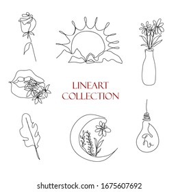 Lineart. Set of modern illustrations. Continuous line, vector illustration. Flowers, Moon, Sun, nature, rose