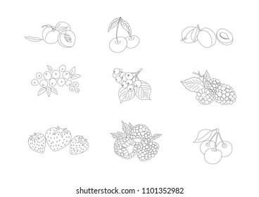 Lined contour fruits collection