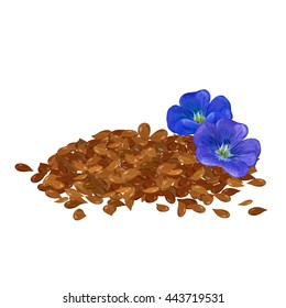 Linen. Flax seeds. Flowers of flax. Linseed oil