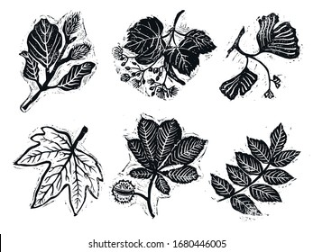 linocut stamps of trees, sakura, magnolia, thousand berry, pine, cypress, ginkgo, linden and other