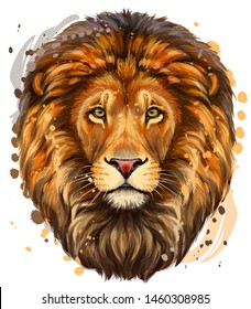 Lion. Artistic, color profile portrait of a lion's head on a white background with watercolor splashes.