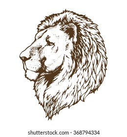 lion hand drawn vector sketch