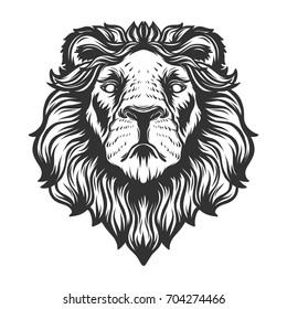 Lion head anfas.Vector illustration.