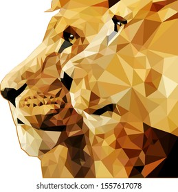 Lion and lioness look one way in the low poly style. Vector stock illustration