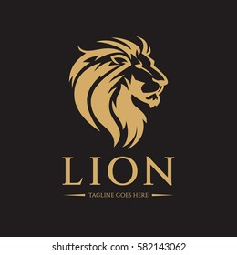 Lion logo design template. Lion head logo. Vector illustration